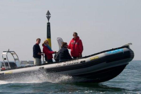 location de bateau moteur semi rigide dans le golfe du